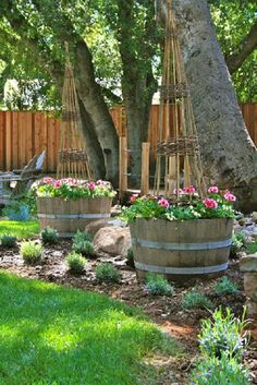 Gardening With Containers 17 Ingeniously Creative DIY Wine Barrel Ideas For Garden Barrel Garden Ideas, Wine Barrel Garden, Whiskey Barrel Planter, Balcony Garden, Garden Planters, Wood Planters, Garden Web, Lavender Garden, Front Yard Landscaping