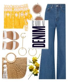 """""""Flare Up:Wide Leg Denim"""" by trinirockstarr ❤ liked on Polyvore featuring Ancient Greek Sandals, JADEtribe, Solace, Miguelina, Chloé, House of Holland and Alima"""