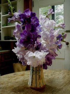 Purple gladiolus in a pretty, tall arrangement. Tall Flowers, Floating Flowers, Purple Flowers, Dried Flowers, Beautiful Flowers, Gladiolus Wedding, Gladiolus Flower, Wedding Flowers, Gladiolus Arrangements