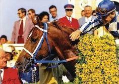 Secretariat at his Preakness Stakes win 1973