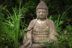 A Buddhist garden may display Buddhist images and art, but more importantly, it can be any simple, uncluttered garden that reflects Buddhist principles of peace, serenity, goodness and respect for all living things. Learn how to create one here.