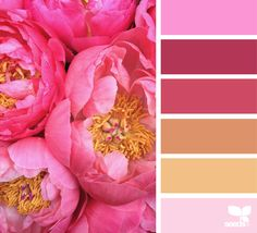Red Colour Palette, Colour Schemes, Color Combos, Color Patterns, Pink Palette, Pink Color Chart, Color Concept, Web Design, Creative Colour
