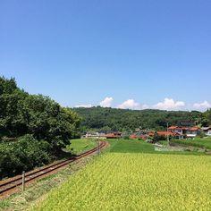田舎の夏(_) by sokko_tatikoma