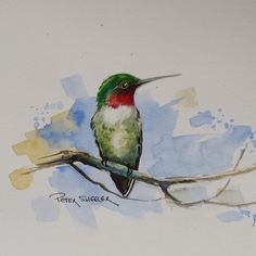 Watercolor bird painting tutorial let you learn easy step by step bird art. This watercolor demo should help you how to make watercolor bird painting in quic. Watercolor Hummingbird, Watercolor Animals, Watercolor And Ink, Watercolor Illustration, Watercolor Paintings, Painting & Drawing, Watercolors, Watercolor Video, Watercolor Projects