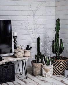 WEBSTA @ lisagermaneau - Le fameux MEUBLE TV #DIY fait avec les pieds @atelier_ripaton et une planche de coffrage qui vous a beaucoup plu sur snap - #home #decoration #cactus #lover