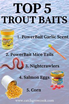 Trout Fishing Bait, Trout Fishing Tips, Walleye Fishing, Salmon Fishing, Saltwater Fishing, Fishing Tricks, Ice Fishing, Best Fishing Bait, Fishing 101