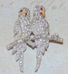 Vintage Parrots - Upload to Mink Road 2015 Bird Jewelry, Jewelry Art, Antique Jewelry, Jewelry Accessories, Real Costumes, Parrots, Mink, Costume Jewelry, Brooches