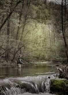 Fly Fishing- I would love to be there, doing that right now...