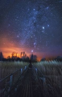 Way to the stars, sunset in Russia by Oleg Kuchorenko