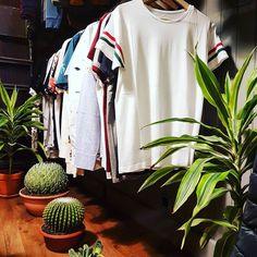Hoy hemos montado un corner de ropa #Ecologica. Una nueva tendencia que está presente en #RegalizFunwear desde hace 8 años con marcas como #MonkeeGenes  #Dedicated  #ThinkingMu... si eres verde esta es tu zona. #beFunWear