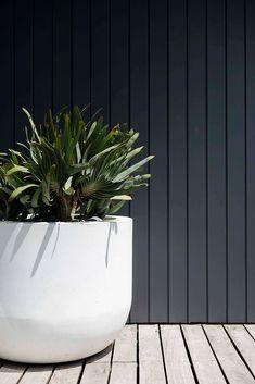 Dizzy Heights - Secret Gardens: Sydney Landscape Architecture