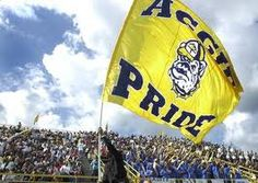 Blue and Gold Pride Baby!