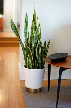 easy ikea hack - cashewnot plant pot | Plants | Pinterest | Plant ...