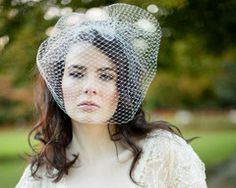 Items similar to French Net Birdcage Wedding Veil, Amelie on Etsy Birdcage Wedding, Wedding Veils, Birdcage Veils, Wedding Day, Feather Headpiece, Here Comes The Bride, Amelie, Bird Cage, Fashion Advice