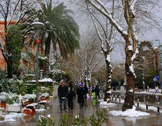 Bağdat Street in the snow - Karda Bağdat Caddesi-Şaşkınbakkal Istanbul