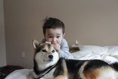 Maru in Michigan. The journal about a baby and his dog