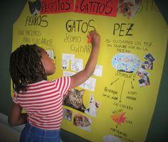 Irene González Collado, maestra de Primaria, nos da las claves para la elaboración de un Mapa Conceptual para alumnos de entre 3 y 6 años.