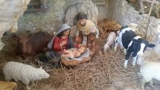 This Australian Nativity Scene has received accolades from all over and is totally awesome. Totally Awesome, Nativity, Scene, Display, News, Floor Space, Billboard, The Nativity, Birth