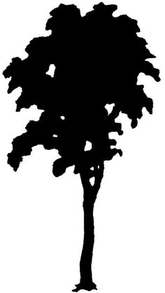 silhouette art   Back to more Tree Silhouettes >>
