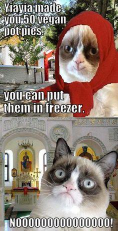 Grumpy Cat on Yia yia's frozen meals