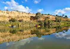 Rilli Reserve, between Berri and Loxton is a pleasant spot to spend a sunny afternoon. Paddle around the island, and then along the cliffs and back to the boat ramp. We'd be pleased to hire you the kayaks, and can deliver them there for you, and collect them when you're done. #rivertime, #myriverland,