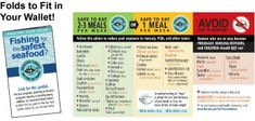 Healthy Fish Guide - happy eating!