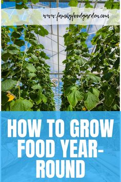 Learn how to grow food year-round here! Read on and find out some garden planning tips, season extenders, and more ideas for growing food 365 days a year. See it here! #gardening #gardeningtips Small Backyard Gardens, Backyard Garden Design, Backyard Landscaping, Outdoor Gardens, Container Gardening, Gardening Tips, Gutter Garden, Gardening Magazines, Grow Food