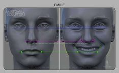 Anatomy of a smile