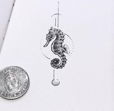 Tiny seahorse sketch