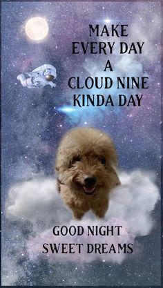 31 Qq Ideas Night Clouds Good Morning My Friend Baby Animals Super Cute