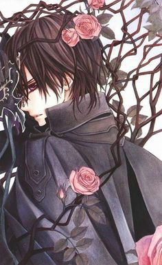 Kaname Kuran ♥ I think he's really pure blood ♥ and vampire knight *-*♥