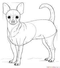 How To Draw A Chihuahua Google Search In 2020 Hundezeichnung Tiere Zeichnen Realistische Zeichnungen