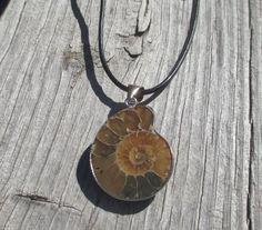 Ammonite Necklace by TrendyCharm on Etsy