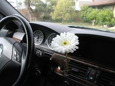 Fun Girly Car Accessory Auto Vase White Daisy Flower