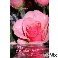 Rose Prayer Verses, Roses, Flowers, Plants, Pink, Rose, Floral, Plant, Royal Icing Flowers