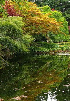 Botany on Vancouver Island