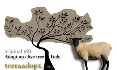 Adopt an olive tree in Italy and give a small-scale artisan a helping hand. http://terraadopt.com/adopt-an-olive-tree/