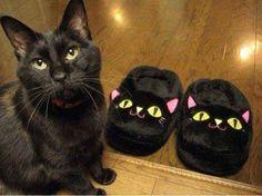 Пара черных тапочек очень похожи на кота или наоборот.