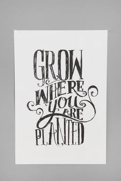 Grow Where You Are Planted by Matthew Taylor Wilson motivationmonday print inspirational black white poster motivational quote inspiring gratitude word art bedroom beauty happiness success motivate inspire Typography Prints, Typography Poster, Typography Quotes, Typography Letters, Matthew Taylor, Taylor Taylor, Cool Words, Wise Words, Urban Outfitters