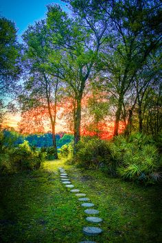 ✯ Stepping Stones To The Light