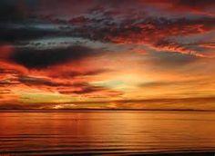 Sun rise - Ecosia