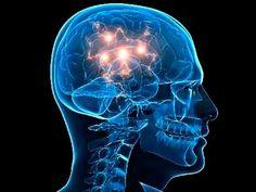 BLOG DJ AILDO: Os neurônios já começaram a se agitar na politica ...