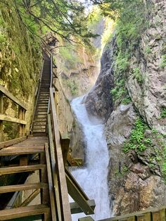 Today I hiked the Gorges du Durnand in Switzerland : hiking Garden Bridge, Switzerland, Backpacking, Waterfall, Hiking, Outdoor Structures, Camping Outdoors, Adventure, Nature