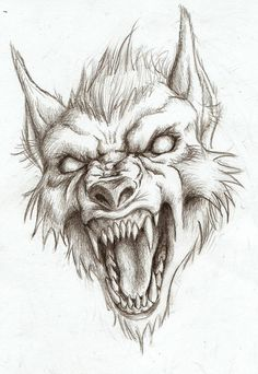 Werewolf head drawing (not my art!) Werewolf head drawing (not my art! Creepy Drawings, Pencil Art Drawings, Art Drawings Sketches, Animal Drawings, Cool Drawings, Fantasy Drawings, Tattoo Design Drawings, Tattoo Sketches, Drawing Art