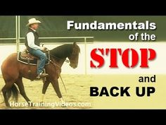 How to Train a Horse to Stop & Back Up - Basics of sliding stop for rein...