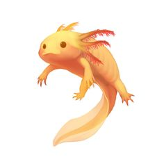 Gold Axolotl by Silce-Wolf.deviantart.com on @DeviantArt                                                                                                                                                                                 More