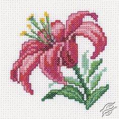Pink Lily - Cross Stitch Kits by RTO - H247