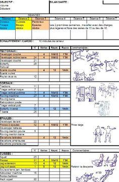 Programmes objectif d finition musculaire de exercices de for Musculation volume
