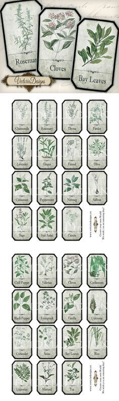 Printable Shabby Herbal Labels by VectoriaDesigns.deviantart.com on @deviantART