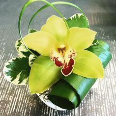 Check this one out guys!!Visit www.fleuriste.ca #interior #green #idea #interior #cymbidium #peace #art #adore #decor #design #flower #florale #flowers #fleuriste #happy #love #colors #creative #natural #modern #leafs